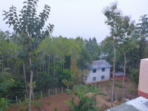 ツプチェ村 ロクさんの家から植林センターを見る